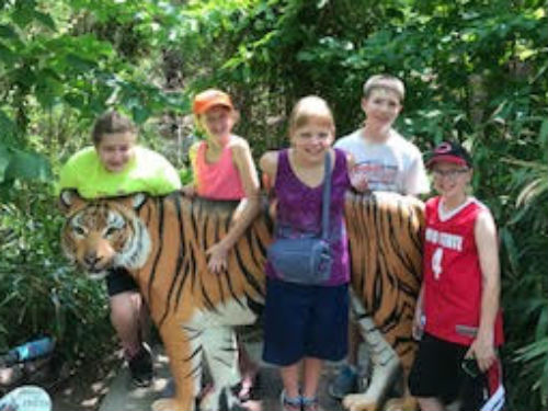 Students at Cincinnati Zoo with tiger