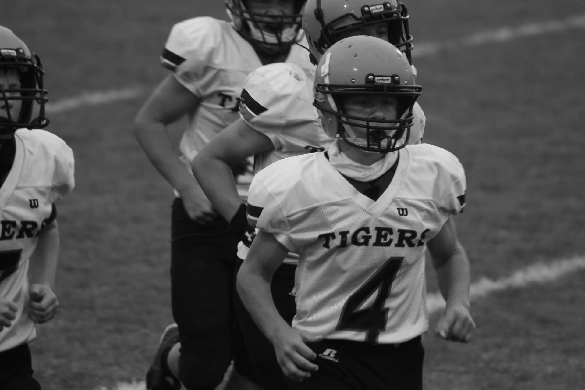 Tigerball effort