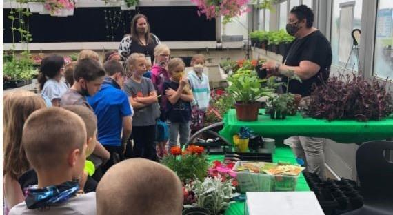 Greenhouse Fun!